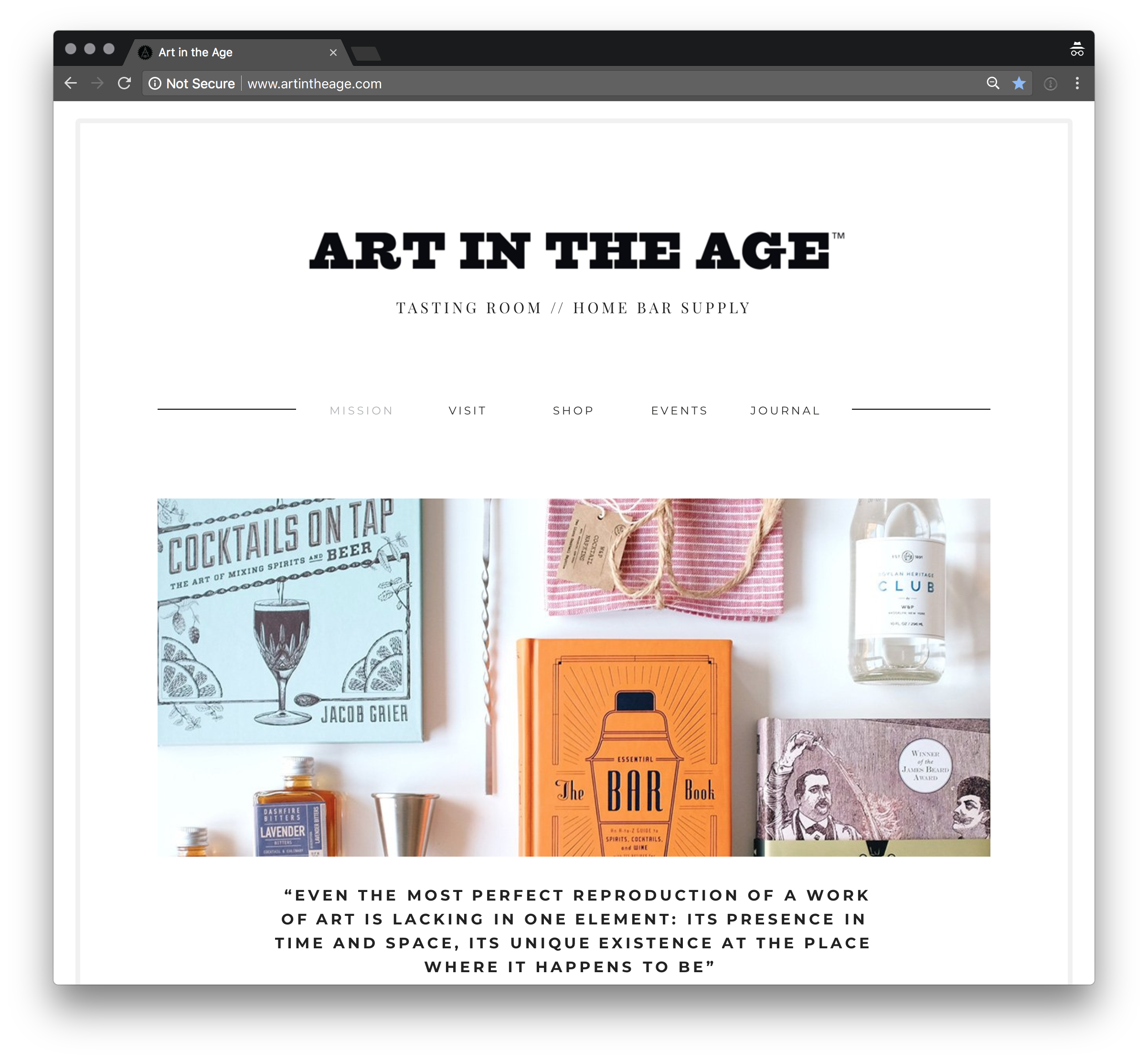 Art in the Age Website
